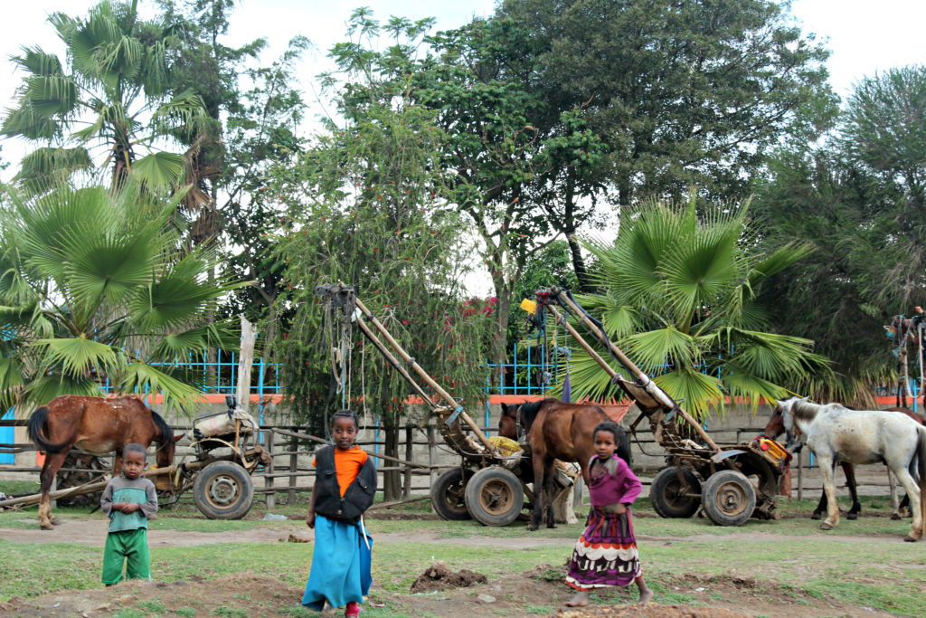 Horse carts (and children!) wait for passengers in Shanto